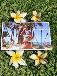 crystals, yoga, subscription box, tea, jewelry, aloha, purse, aloe vera, bug repellent, travel bag,