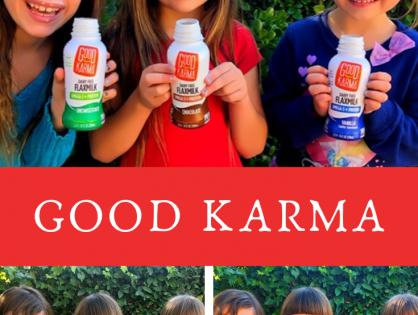 Flaxseed Milk Never Tasted So Good - Good Karma