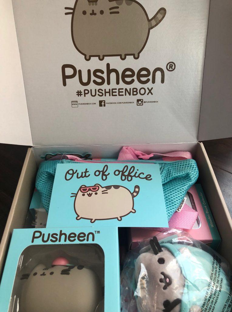 pusheen, subscription box, cat, jump rope, yoga towel, plush, jacket, calendar, key holder, socks